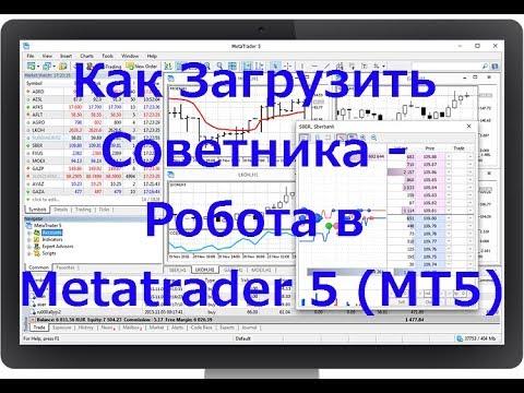 Как загрузить советника - торгового робота в терминал МТ5