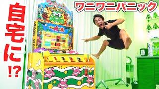 【ガチ】自宅にワニワニパニックが来ました!!