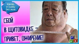 Как Щитовидная железа влияет на вес тела? Похудение и щитовидка.