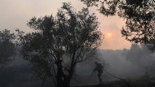 Σε κατάσταση έκτακτης ανάγκης η Εύβοια - Μαίνεται μεγάλη πυρκαγιά…