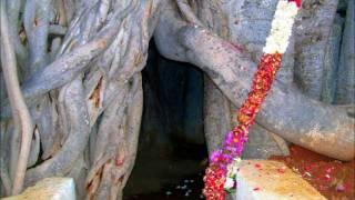 Om Sivoham song for Swami Nithyananda