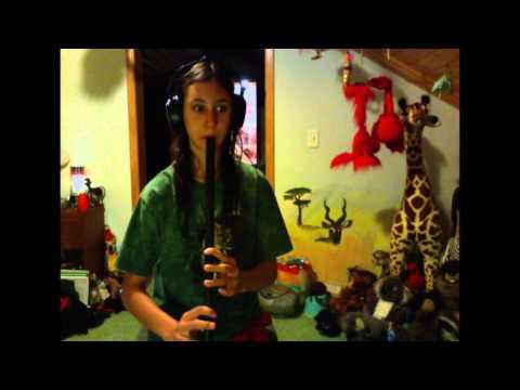 Tunes On My Dixon Low D Tin Whistle