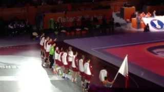 Entry of Qatari handball team, final of handball world cup 2015