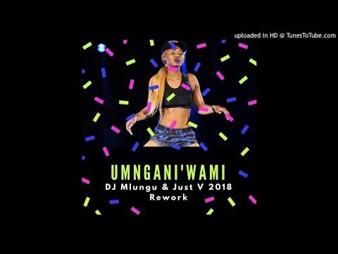 Babes Wodumo - Umngani'wami (DJ Mlungu & Just V 2018 Rework) [Audio]