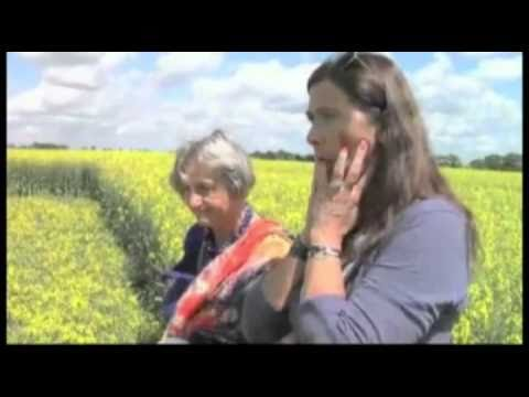 "Quite Interesting Crop Circle and ""The Other Side"" -  tv FEM"