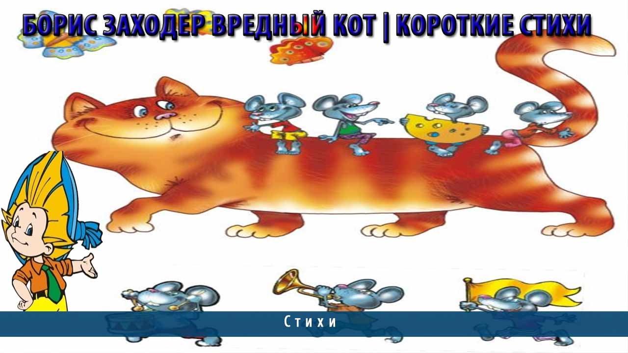 Заходер б.в. вредный кот