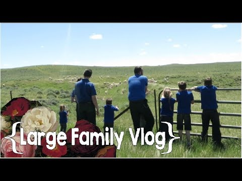 Feeling Dejected │ Homeschool Convention Day 2 ║ Large Family Vlog