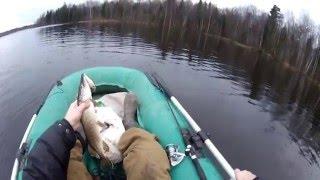 Ловля щуки на спиннинг в конце декабря (видео-отчет) рыбалка декабрь 2015 Ловля щуки в декабре