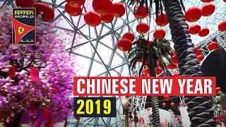 Chinese New Year 2019 Celebrations   Ferrari World Abu Dhabi