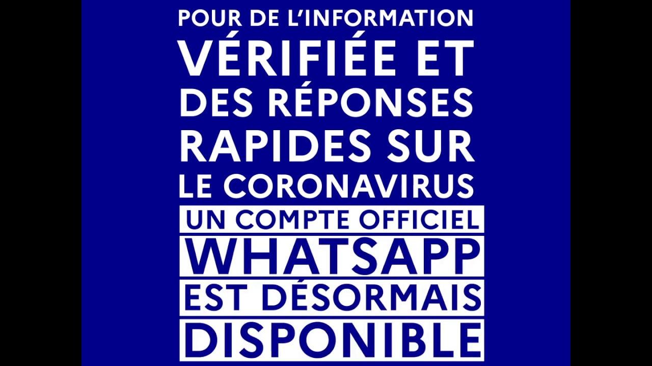 COVID-19 | Un compte WhatsApp pour de l'information vérifiée et des réponses rapides | Gouverne