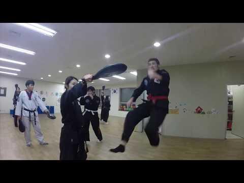 Taekwondo Training to get a Black Belt in Korea