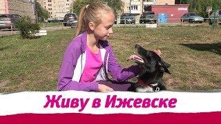В Ижевске пройдет первый Гав-гав фестиваль