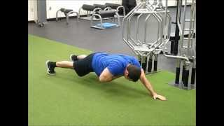 Long Lever Plank Shoulder Taps