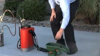 Residential Pest Control | Essential Pest Control