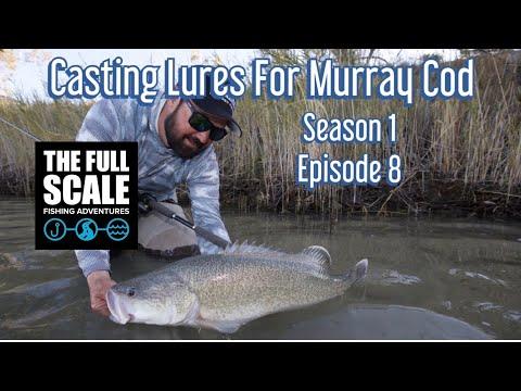 Şamandıralı Oltayla Balık Avı Sazan Avı Nasıl Yapılır CATCH FISH FISHING 🦈 #1 - Bilgiyelpazesi from YouTube · Duration:  9 minutes 36 seconds