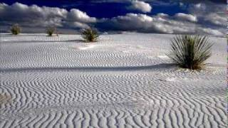 Dreaming Trees - Pat Metheny Trio