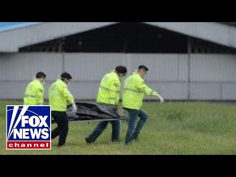 Stowaways hiding in landing gear die after fall from plane