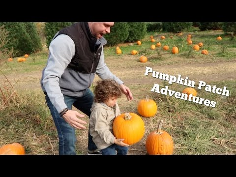 PUMPKIN PATCH ADVENTURES!