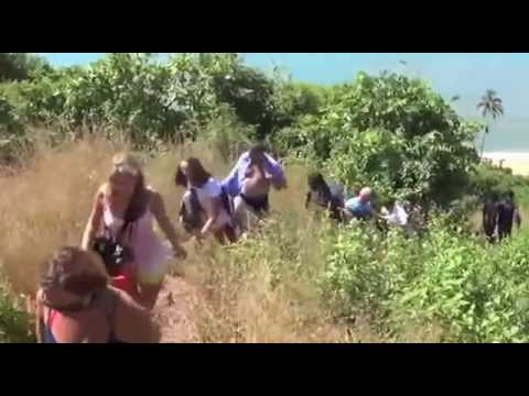 3 russian women tourists drowned in goa