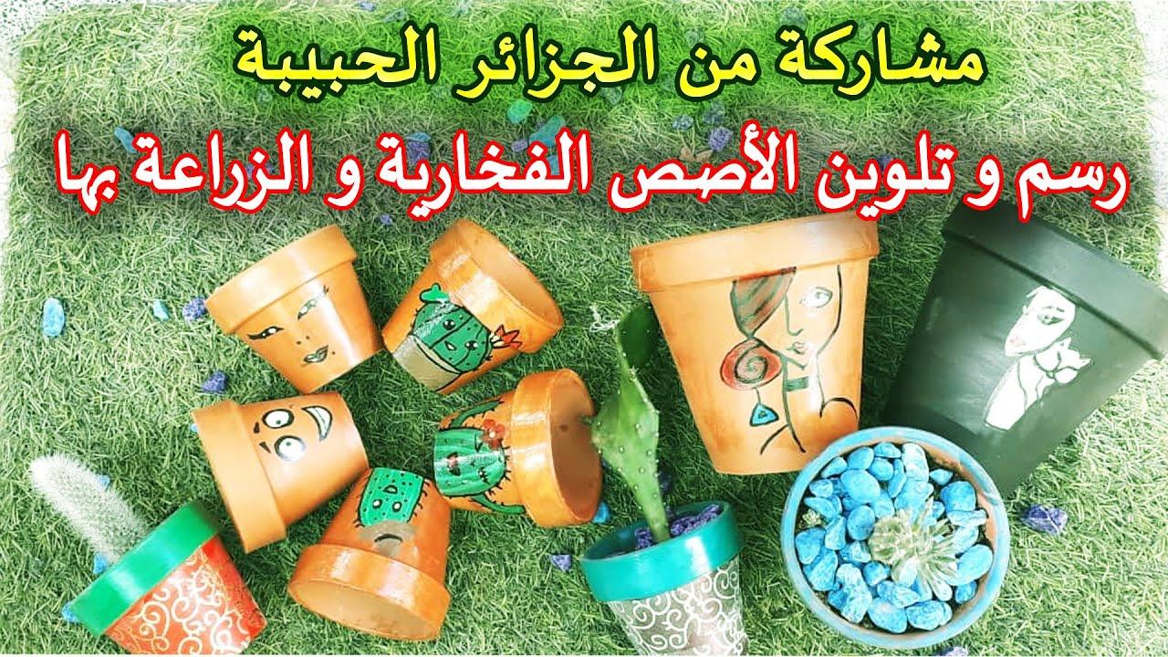 مشاركة من الجزائر | رسم و تلوين الآصص الفخارية و الزراعة بها