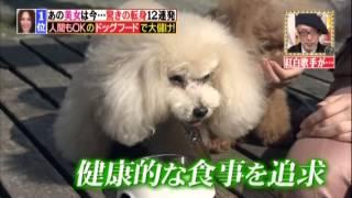 垣内りか(愛内里菜)TV出演発見【No.04】!!! 垣内りか 検索動画 13