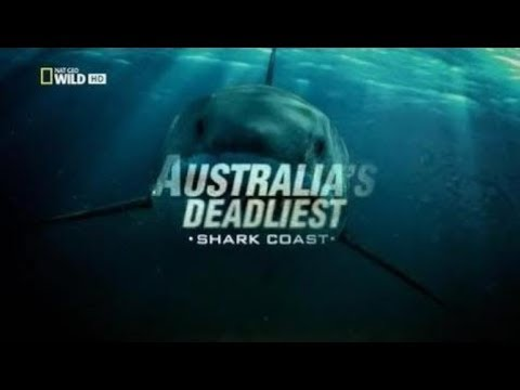 Australia's Deadliest: Shark Coast [HD National Geographic] PBS Nova :