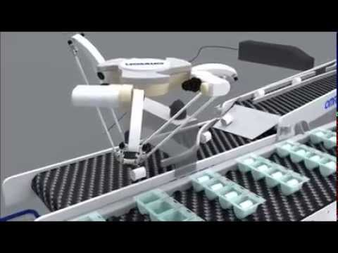 Omron Delta Robot Pick And Place System Solution Youtube