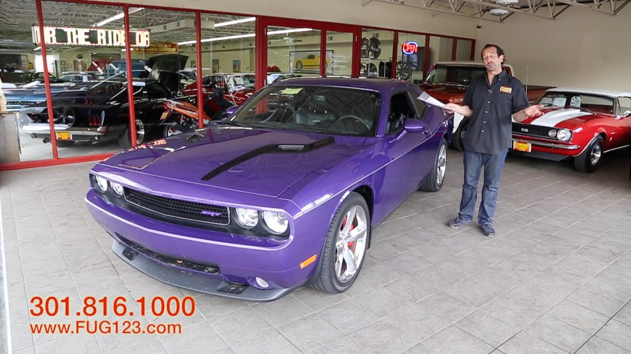 Awesome Plum Crazy Purple Paint