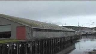 Norway II: Berlevåg