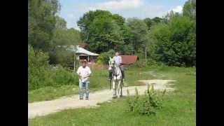 Конный двор в Седневе(Катание на конях в Седневе