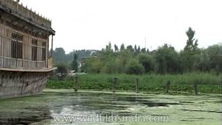 Dal Lake dries up but house-boats retain the old charm