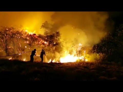 شاهد: استمرار حرائق الغابات في جزر الكناري  - نشر قبل 9 دقيقة