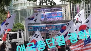 ●태극기 애국총단결 !! (대한문,광화문/2018.8.25)