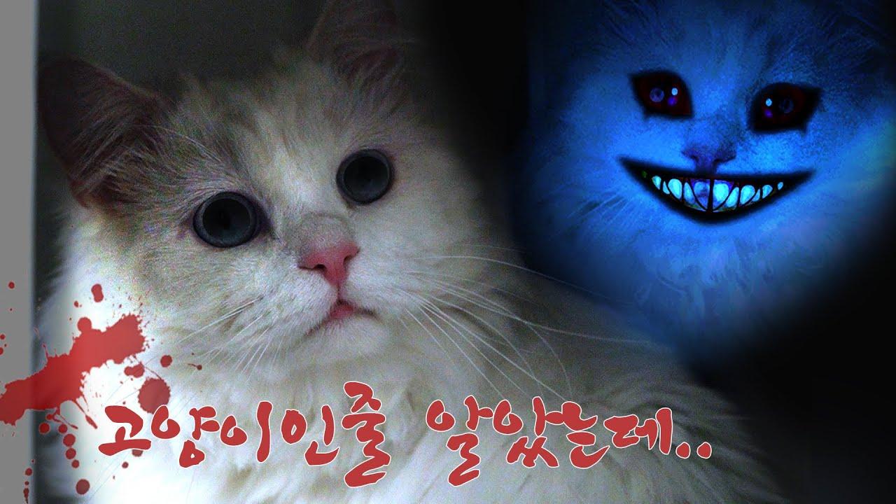 침대 밑에서 이상한게 느껴질때.. 【납량특집 Ep.04】 | 고양이산책