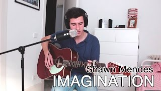 Shawn Mendes Imagination