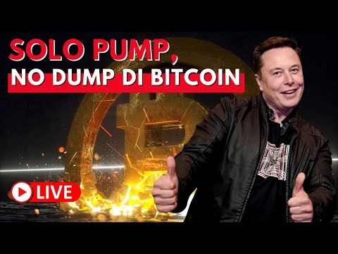 trader portafoglio bitcoin