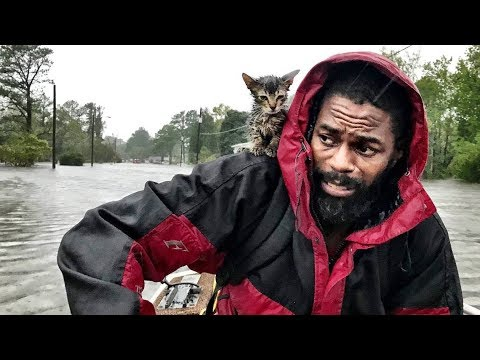 A man and his 'Survivor' kitten escape the floodwaters from Hurricane Florence