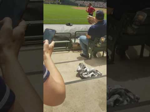 Streaker at Giants Brewers game 6/8/17 part 1