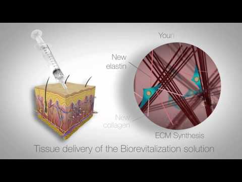 In vitro study of RRS HA injectable mesotherapy - Video abstract [95108]