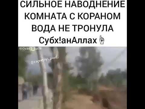 Бало казолардан сиз азиз мусилмонларни оллохим уз панохида асрасин