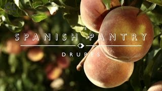 The Spanish Pantry: Drupes