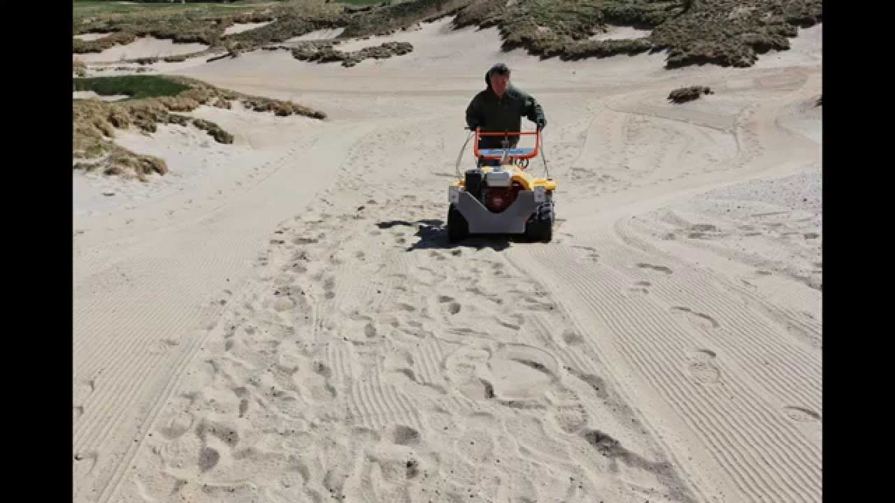 how to clean scallops of sand