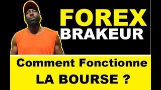 COMMENT FONCTIONNE LA BOURSE et le FOREX - Formation Trading Débutant