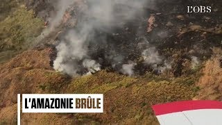Au Brésil, la forêt amazonienne part en fumée, victime de la déforestation