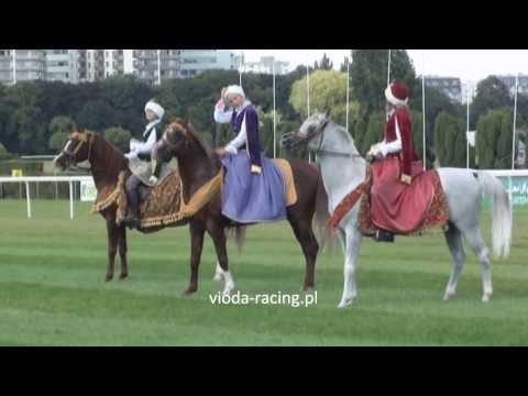 Pokaz koni arabskich - 25.08.2013