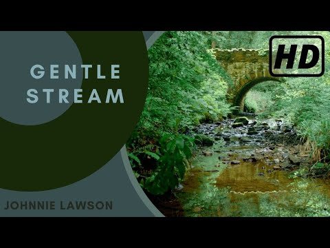 Relaxing Forest Nature Sounds-Soothing Birds Singing-Natural Sound of Water Relaxation