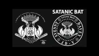 Satanic Bat - Beat On The Brat (Ramones Cover)