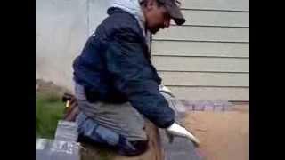 Installing A Paver Patio