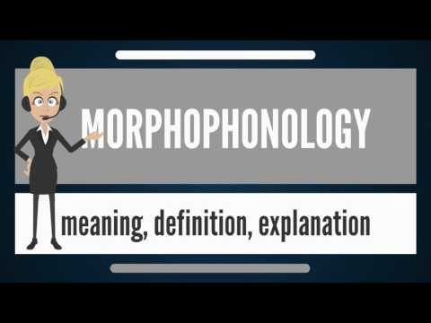 What is MORPHOPHONOLOGY? What does MORPHOPHONOLOGY mean? MORPHOPHONOLOGY meaning