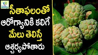 Health Benefits of Custard Apple - Health Tips in Telugu || Mana Arogyam